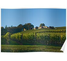 Another winery Poster
