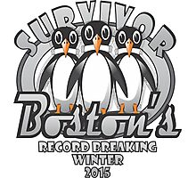 Survivor Boston's Record Breaking Winter 2015 Photographic Print