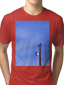 Crow on a Telephone Pole Tri-blend T-Shirt