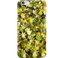 FALL GREENS iPhone Case/Skin