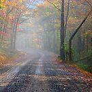 Foggy Mountain Rain by NatureGreeting Cards ©ccwri