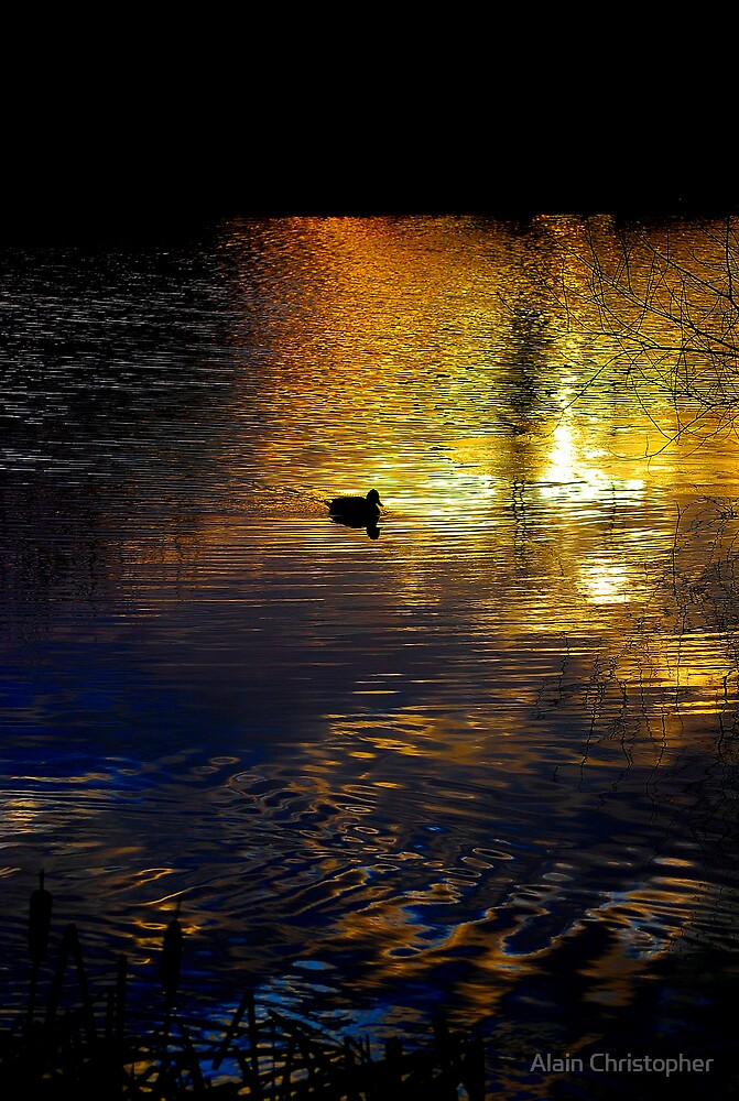 Golden lake by Alain Christopher