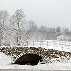 Stone Bridge under Snow  by Stanislav Sokolov