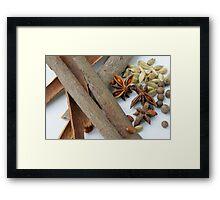 Spices Framed Print