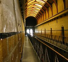 The Walk:Old Melbourne Gaol by Tania  Donald