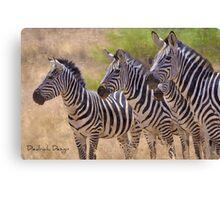 Striking Stripes Canvas Print