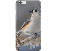 Tufted Titmouse iPhone Case/Skin