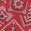 Red Bandana Print by Betty  Town Duncan