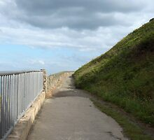 Path round the cliff  by Riihele