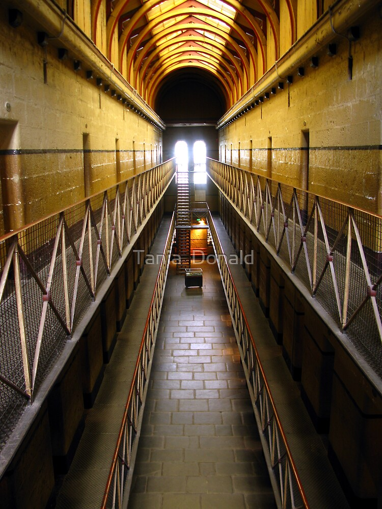 Perspective:Old Melbourne Gaol by Tania  Donald