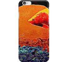 Competition Large and Small iPhone Case/Skin