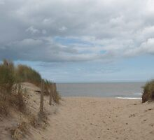 Dunes in Brittas Bay, Ireland by Riihele