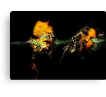 ACID BURN I Canvas Print