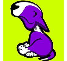 Innocent English Bull Terrier Puppy Purple  Photographic Print