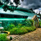 Sonya's Garden by Dennis Pilapil