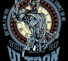 The Age of Ultron by Akiwa
