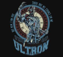 The Age of Ultron Kids Clothes