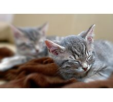 Twins sleeping Photographic Print