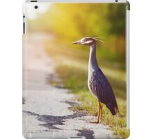 Night Heron Waiting for His Ride iPad Case/Skin