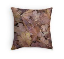 Autumnal days Throw Pillow