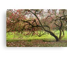 Nature´s tranquillity... Metal Print