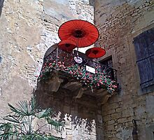 Balcony with a difference by hilarydougill