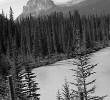 Castle Mountain Different Perspective by Tiffany Vest