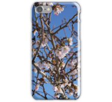 Winter Cherry Blossom iPhone Case/Skin