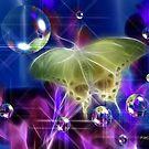 Glowing Wings by Pat Moore