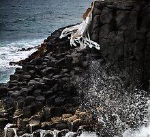 Precarious by Jillian Merlot