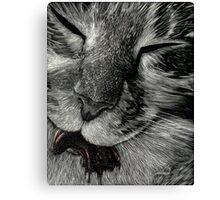 Cat Got Your Tongue Canvas Print
