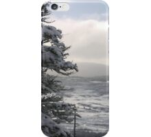 Winter Snow Scene Newfoundland Canada iPhone Case/Skin