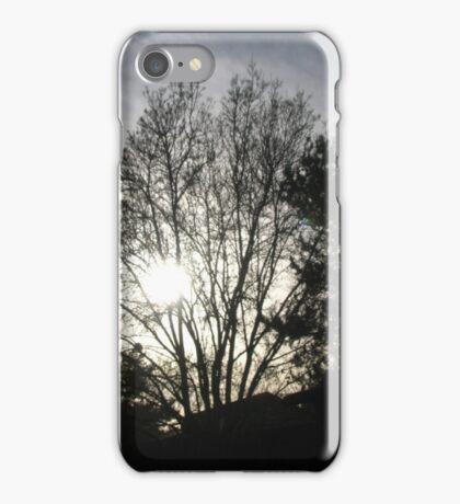 Mystery Tree iPhone Case/Skin