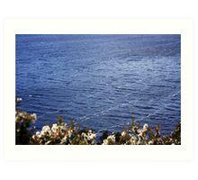 Wind Lines on Dove Lake Art Print