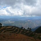 Sitio La Presa, Pungayan Tuba Benguet by slazenger