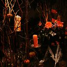Halloween at the florists by AndrewWakelin