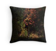 Autumn View Throw Pillow