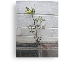 Against the odds Metal Print