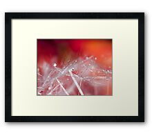 Crystallized.  Framed Print