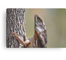 Lizard meets Tree. Canvas Print