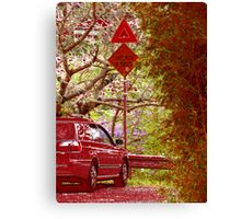 red hill 7 Canvas Print