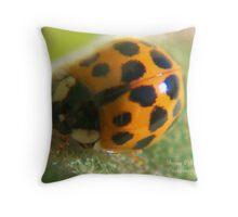 Shiney Lady Throw Pillow