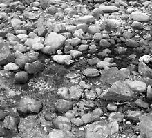 Creekbed (Black & White) by pfeifferphotos