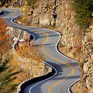 This Road is making me dizzzzzzyyyy! by ZeeZeeshots