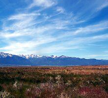 Wallowa Prairie (Color) by pfeifferphotos