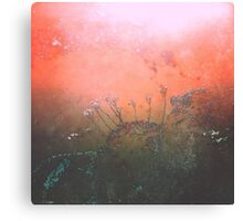 Slow Jamz of Nature Canvas Print
