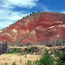 Painted Hills by pfeifferphotos