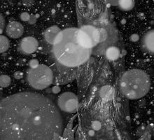 Spirit Bear in Snowstorm by Sue Smith