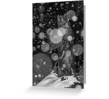 Spirit Bear in Snowstorm Greeting Card