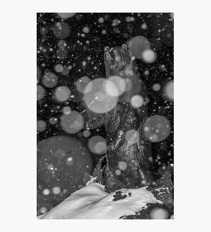 Spirit Bear in Snowstorm Photographic Print